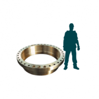 Labyrinth ring for hydroelectric dam
